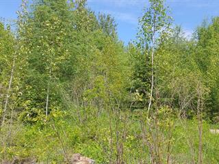 Land for sale in Lac-Saint-Paul, Laurentides, Chemin du Pérodeau, 21183243 - Centris.ca