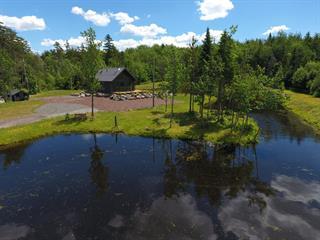 Maison à vendre à Saint-Pierre-de-la-Rivière-du-Sud, Chaudière-Appalaches, 3955, Route de Saint-Pierre, 24227086 - Centris.ca