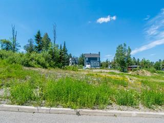 Lot for sale in Cookshire-Eaton, Estrie, Rue des Pins, 10289276 - Centris.ca