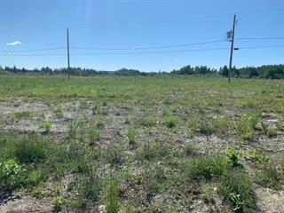 Lot for sale in Amos, Abitibi-Témiscamingue, 342, Rue  Bellevue, 24186472 - Centris.ca