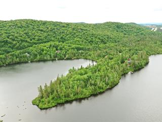 Land for sale in Saint-Faustin/Lac-Carré, Laurentides, Chemin de l'Iris, 28856256 - Centris.ca