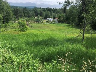 Terrain à vendre à Sainte-Brigitte-de-Laval, Capitale-Nationale, 45, Rue du Calvaire, 20665500 - Centris.ca