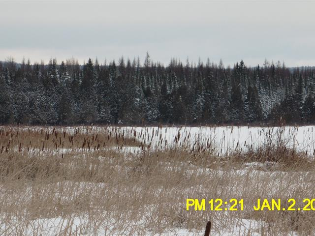 Lot for sale in Adstock, Chaudière-Appalaches, Chemin du Lac-Bolduc, 26344392 - Centris.ca
