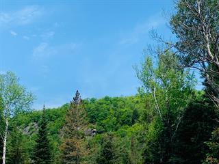 Lot for sale in Sainte-Adèle, Laurentides, 1701, Chemin du Moulin, 15869342 - Centris.ca