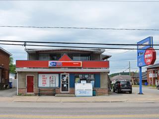 Duplex à vendre à La Tuque, Mauricie, 301 - 303, Rue  Bostonnais, 23517361 - Centris.ca