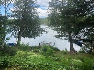 Terrain à vendre à Bouchette, Outaouais, 122, Chemin  Richard, 11870489 - Centris.ca