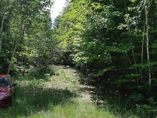 Terrain à vendre à Val-des-Monts, Outaouais, 74, Chemin du Rouge-Gorge, 26926996 - Centris.ca