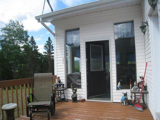 House for sale in Saint-René-de-Matane, Bas-Saint-Laurent, 23, Route du Ruisseau-Gagnon, 23518090 - Centris.ca