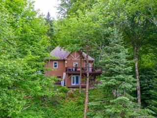House for sale in Saint-Faustin/Lac-Carré, Laurentides, 41, Chemin de la Buse, 15410555 - Centris.ca