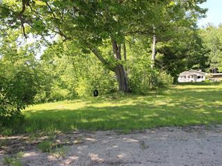 Maison à vendre à Waltham, Outaouais, 51, Chemin  Lamarche, 13777412 - Centris.ca