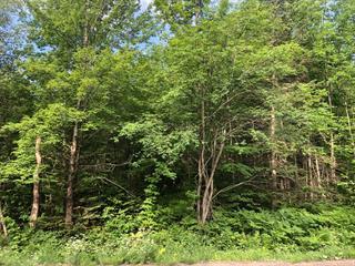 Terrain à vendre à Eastman, Estrie, Chemin de Mont-Bon-Plaisir, 24439646 - Centris.ca