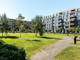 Condo / Appartement à louer à Montréal (Lachine), Montréal (Île), 2125, Rue  Remembrance, app. 317, 19308932 - Centris.ca