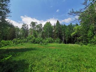 Lot for sale in Saguenay (Lac-Kénogami), Saguenay/Lac-Saint-Jean, Chemin des Érables, 24252303 - Centris.ca
