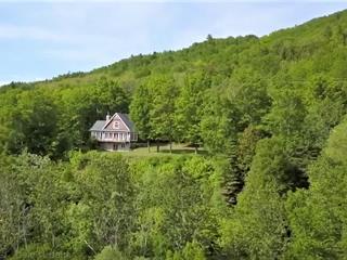 House for sale in Baie-Saint-Paul, Capitale-Nationale, 150, Chemin du Cap-aux-Rets, 21710418 - Centris.ca