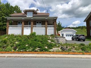 Maison à vendre à Saint-Léon-de-Standon, Chaudière-Appalaches, 483, Rue  Principale, 18749981 - Centris.ca