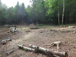 Terrain à vendre à Mont-Tremblant, Laurentides, Allée de la Sapinière, 22938536 - Centris.ca