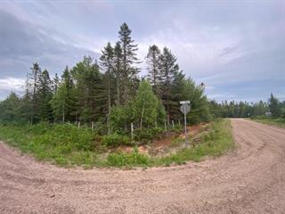 Lot for sale in Saint-Raymond, Capitale-Nationale, Rue  Julien, 28089338 - Centris.ca