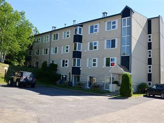Condo à vendre à Saint-Ferréol-les-Neiges, Capitale-Nationale, 105, Rue de la Tourbe, app. 407, 9741550 - Centris.ca