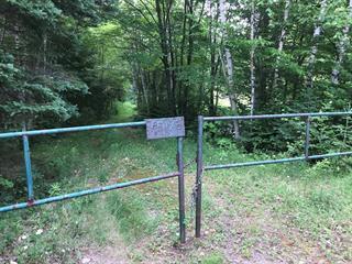 Lot for sale in Sainte-Émélie-de-l'Énergie, Lanaudière, 317, Chemin du Grand-Rang, 28765028 - Centris.ca
