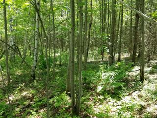 Land for sale in Sainte-Clotilde-de-Horton, Centre-du-Québec, 2500, Rang  Double, 12645482 - Centris.ca