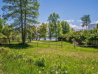 Lot for sale in L'Isle-aux-Allumettes, Outaouais, 21, Chemin  Beech, 12651988 - Centris.ca