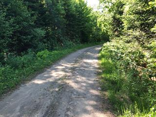 Lot for sale in Nantes, Estrie, Chemin du Lac-de-l'Orignal, 13526296 - Centris.ca