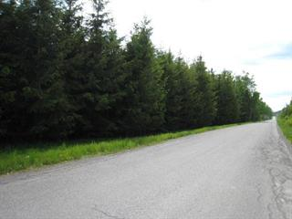 Lot for sale in Gaspé, Gaspésie/Îles-de-la-Madeleine, Avenue  Baird, 22349985 - Centris.ca