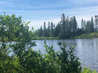 Lot for sale in Nantes, Estrie, Chemin du Lac-de-l'Orignal, 11474833 - Centris.ca