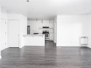 Condo / Appartement à louer à Montréal (Le Sud-Ouest), Montréal (Île), 219, Rue  Maria, app. 308, 27886973 - Centris.ca