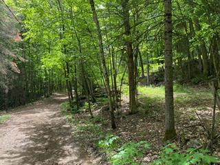 Terrain à vendre à Wentworth-Nord, Laurentides, Chemin  Fandrich, 26779392 - Centris.ca