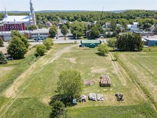 Terrain à vendre à Cap-Saint-Ignace, Chaudière-Appalaches, Chemin des Pionniers Est, 24291966 - Centris.ca