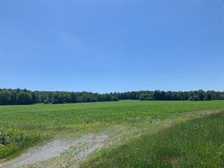 Land for sale in Bedford - Canton, Montérégie, 1112, Chemin de Philipsburg, 25245102 - Centris.ca