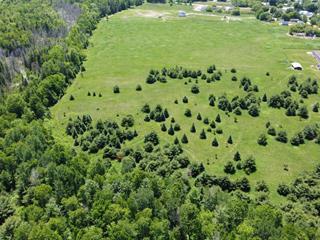Lot for sale in Portage-du-Fort, Outaouais, Chemin de Calumet, 28338537 - Centris.ca