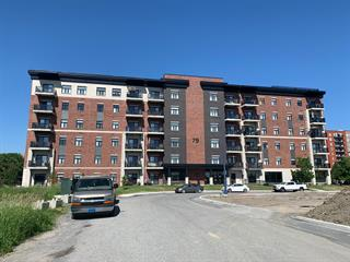 Condo for sale in Gatineau (Gatineau), Outaouais, 79, Rue de la Cité-Jardin, apt. 601, 10630748 - Centris.ca
