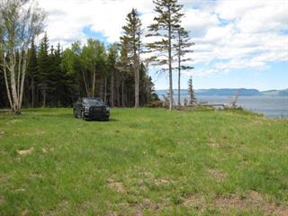 Terrain à vendre à Gaspé, Gaspésie/Îles-de-la-Madeleine, boulevard de Douglas, 23975430 - Centris.ca