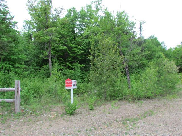 Terrain à vendre à Grenville-sur-la-Rouge, Laurentides, Chemin de la Héronnière, 22055940 - Centris.ca