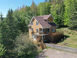 House for sale in Saint-Faustin/Lac-Carré, Laurentides, 457, Rue du Domaine-Lauzon, 14651862 - Centris.ca