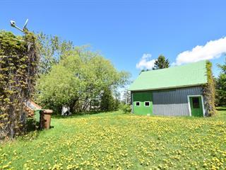 Maison à vendre à Saint-François-Xavier-de-Viger, Bas-Saint-Laurent, 117, Rue  Principale, 23916078 - Centris.ca