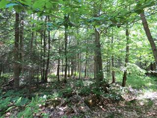 Terrain à vendre à Stukely-Sud, Estrie, 740, Chemin  Claude, 10016262 - Centris.ca
