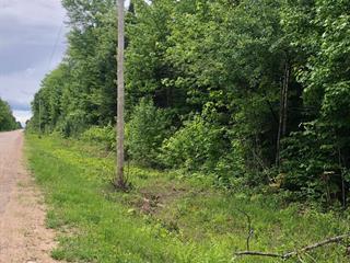Terre à vendre à L'Isle-aux-Allumettes, Outaouais, Chemin de la Culbute, 12203872 - Centris.ca
