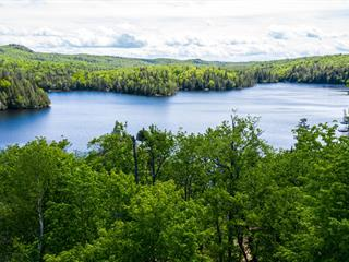 Lot for sale in Wentworth-Nord, Laurentides, Rue du Domaine, 20851771 - Centris.ca