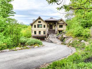 Maison à vendre à Mont-Tremblant, Laurentides, 375, Chemin de Cassiopée, 14417314 - Centris.ca