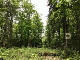 Terre à vendre à Gore, Laurentides, Chemin  Cambria, 14424537 - Centris.ca