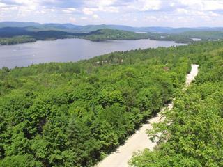 Land for sale in Saint-Donat (Lanaudière), Lanaudière, Chemin du Mont-Jasper, 22391483 - Centris.ca