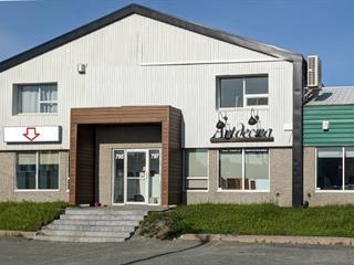 Commercial unit for rent in Rouyn-Noranda, Abitibi-Témiscamingue, 795, Avenue  Granada, 19371540 - Centris.ca