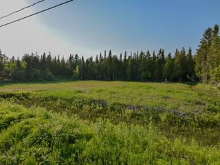 Lot for sale in Sainte-Anne-des-Monts, Gaspésie/Îles-de-la-Madeleine, Rue  Alizée, 23536291 - Centris.ca