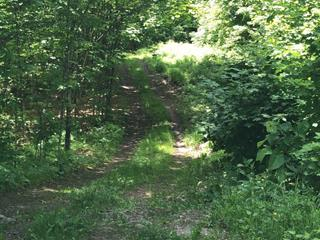 Lot for sale in Wentworth-Nord, Laurentides, Rue  Flavio, 19648886 - Centris.ca