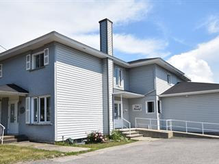 Bâtisse commerciale à vendre à Rivière-du-Loup, Bas-Saint-Laurent, 167, Rue  Fraserville, 28944787 - Centris.ca