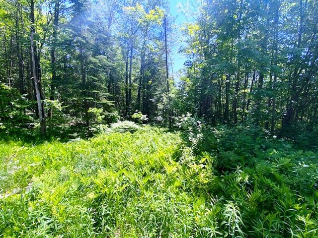 Lot for sale in Sainte-Mélanie, Lanaudière, Chemin  William-Malo, 22660056 - Centris.ca
