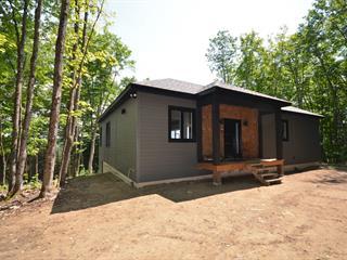 Maison à vendre à Brébeuf, Laurentides, 45, Place  Romaric, 21733787 - Centris.ca